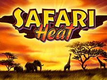 Safari Heat играть на деньги в клубе Эльдорадо